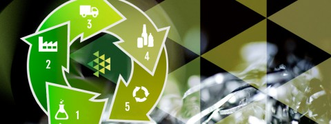 ciclo ambientale